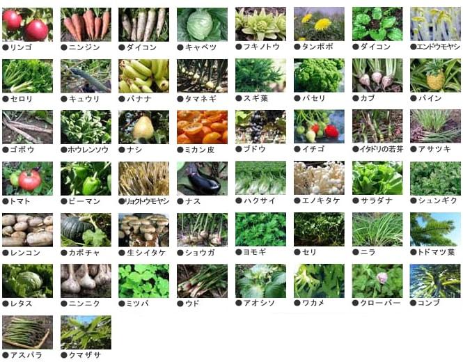 50種以上の野菜・果物