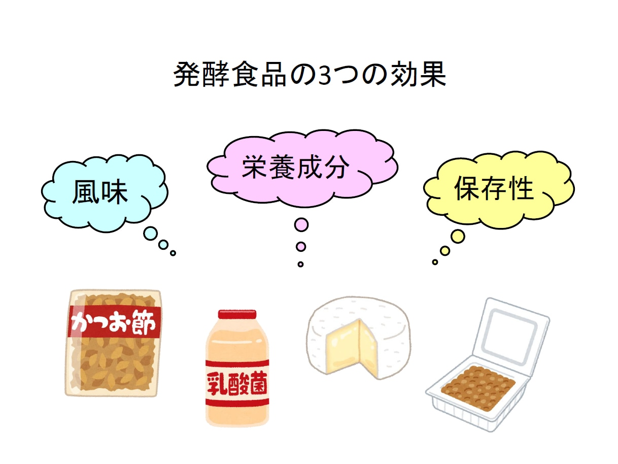 発酵の効果