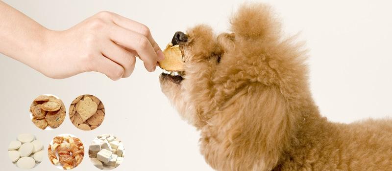 帝塚山ハウンドカムの犬用無添加おやつは安心安全の無添加おやつ