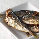 魚のおやつカテゴリ
