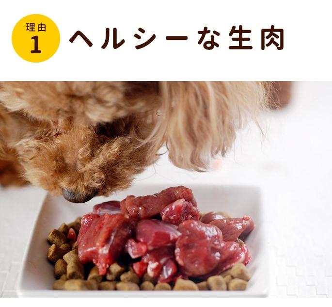 愛犬が食べているしか肉は低カロリーなのに高たんぱく、とってもヘルシーで老犬にもお勧め