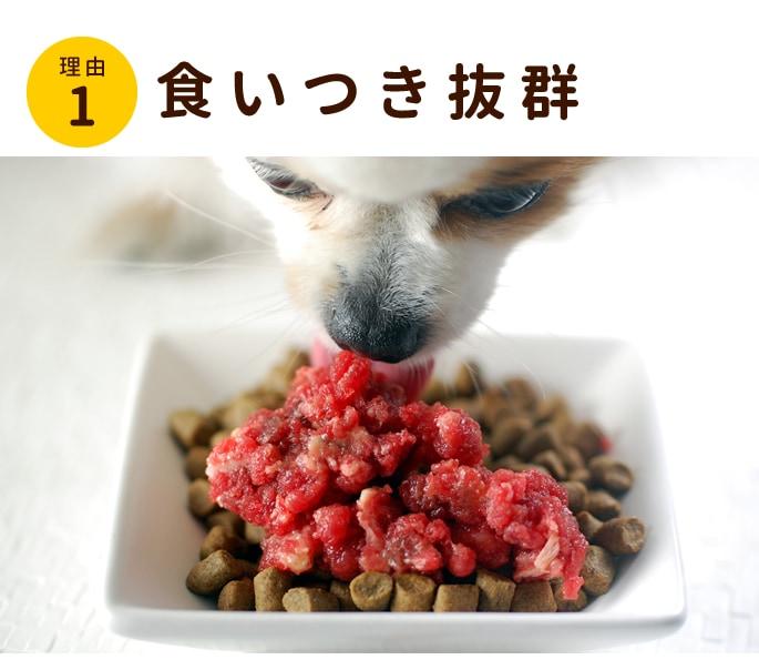 新鮮生馬肉は愛犬の食いつき抜群です