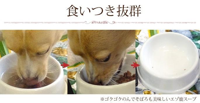 エゾ鹿スープを飲んで食べる看板犬いわて お皿がピカピカになるまでゴクゴク