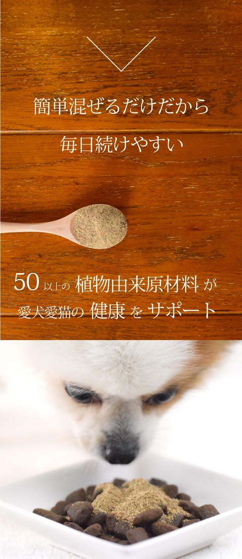 50以上の植物由来原材料が愛犬愛猫の健康をサポート
