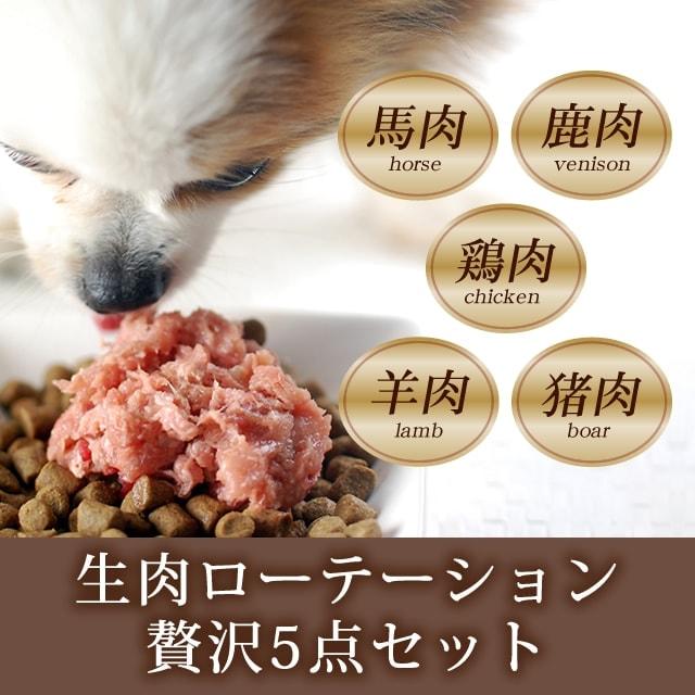 馬肉 鶏ネック骨ごとミンチ エゾ鹿肉 ラム肉 猪肉 生肉ローテーションセット