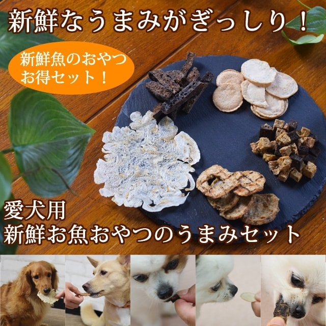 無添加お魚のおやつセット 愛犬用 新鮮お魚おやつのうまみセット