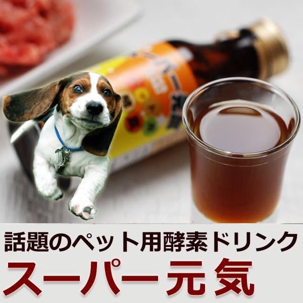 発酵飲料 スーパー元気