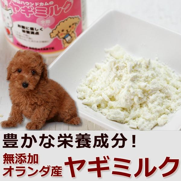 天然飼育のヤギから採った無添加・無着色で栄養豊富なヤギミルク