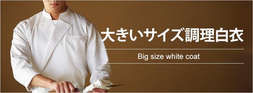 大きいサイズ調理白衣