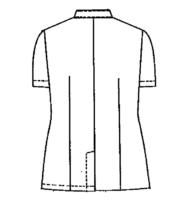 YW50 バックスタイルイラスト
