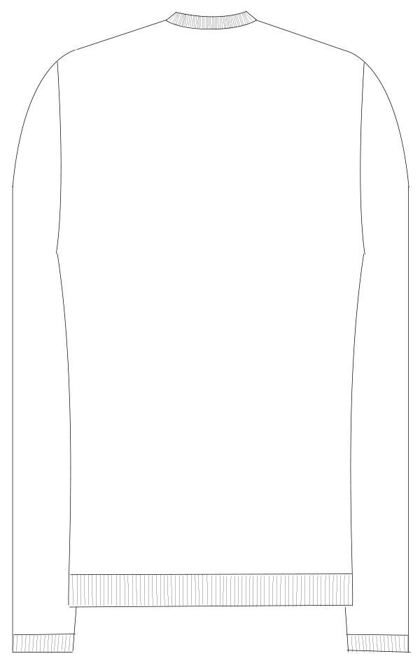 CH-2100 バックスタイルイラスト