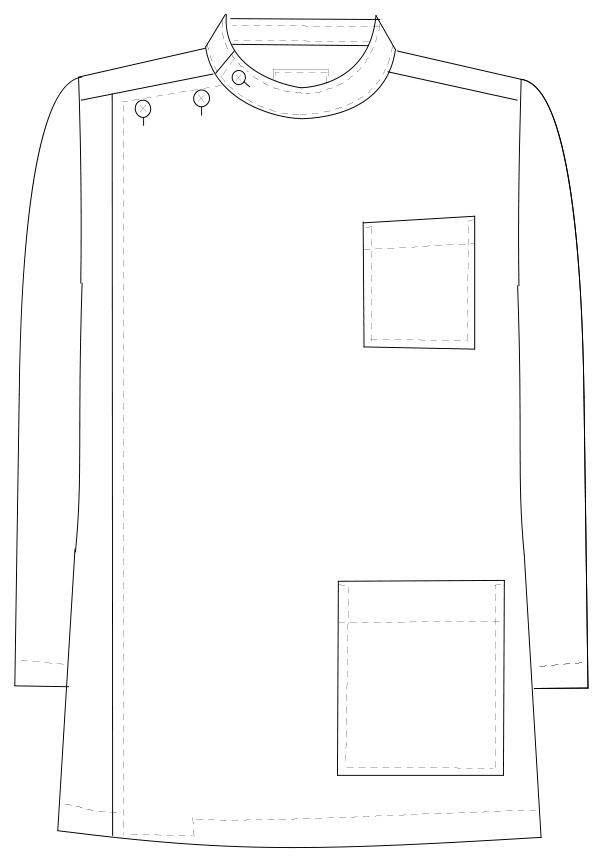 US-81 フロントスタイルイラスト