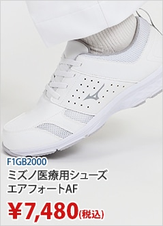 F1GB2000