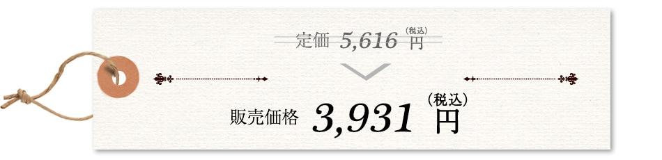 定価(税込)5,040円→販売価格(税込)3,528円