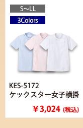 kes5172_2