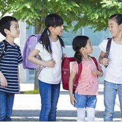 学校教材 教員向け 金属材料 国内製造 日本製