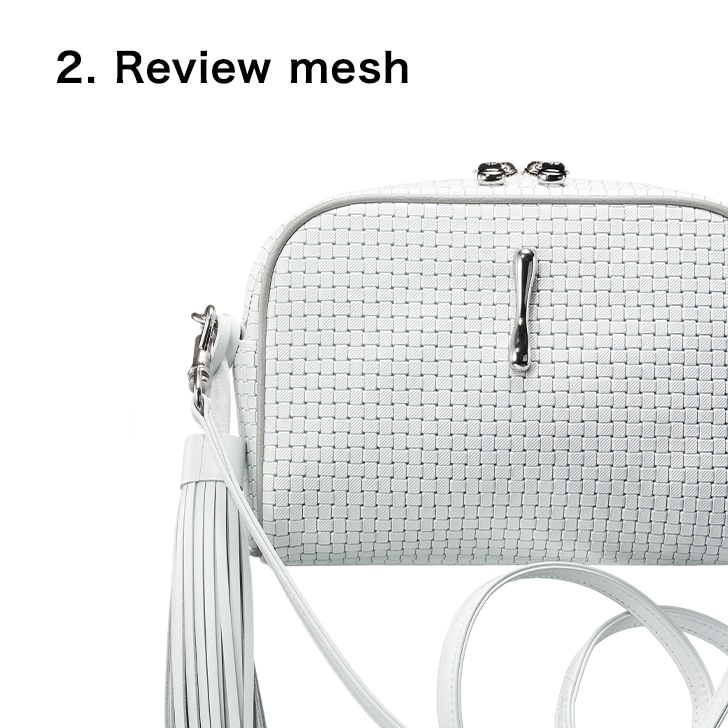 2.Review mesh
