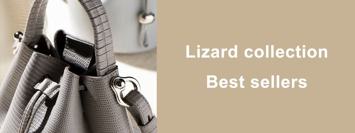 Lizard collection Best sellers