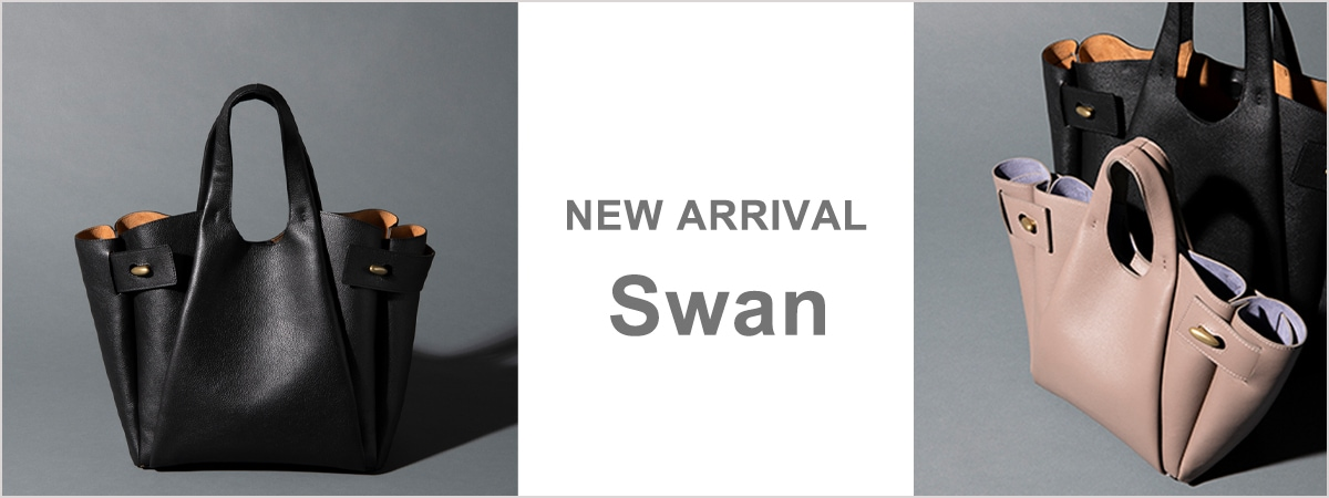 New arrival Swan