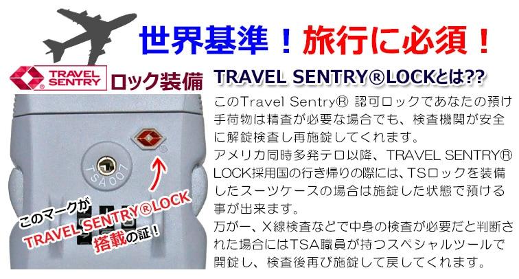 TSAロック説明