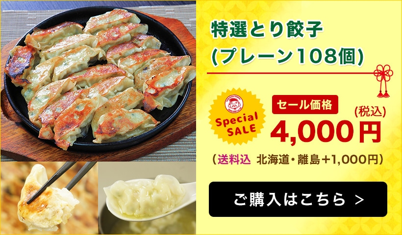 【エビス通販 7周年記念祭り!】宮崎県産エビス鷄 とり餃子セット