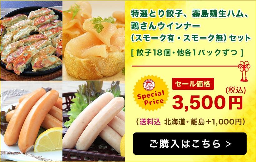 【エビス通販 7周年記念祭り!】特選とり餃子・霧島鶏生ハム・鶏さんウインナーセット