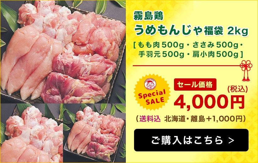 【エビス通販 7周年記念祭り!】うめもんじゃ福袋