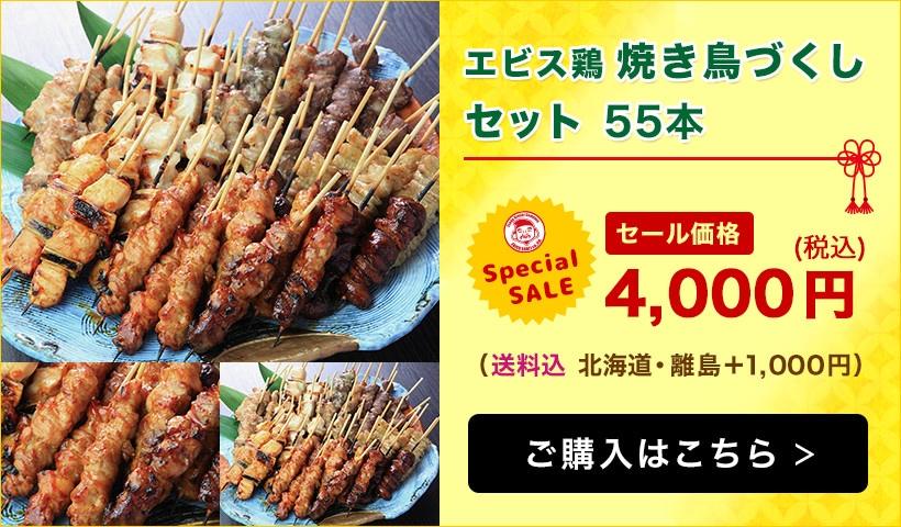 【エビス通販 7周年記念祭り!】宮崎県産エビス鶏 焼き鳥づくしセット