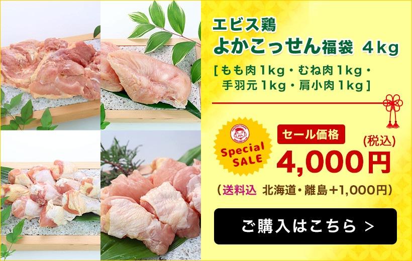【エビス通販 7周年記念祭り!】エビス鶏よかこっせん福袋