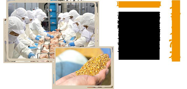 【エビス商事】宮崎県は南西部にある都城市に本社を置く株式会社エビス商事ではブロイラー食肉加工販売、鶏豚畜産物飼料販売を主な事業としています。