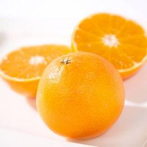 ミヤモトオレンジガーデン