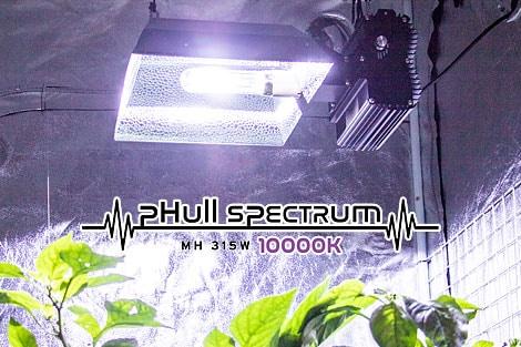 CMH_lamp_10000K