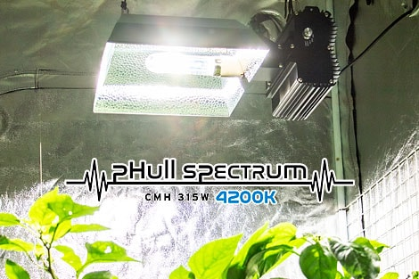 CMH_lamp_4200K