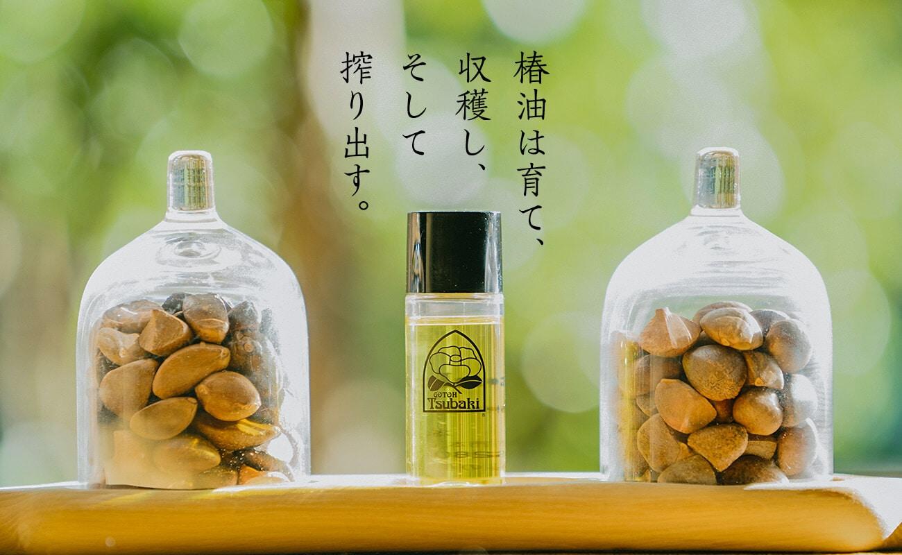 h1 椿油は育て、収穫し、そして搾り出す。