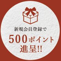 新規会員登録で500ポイント進呈!!