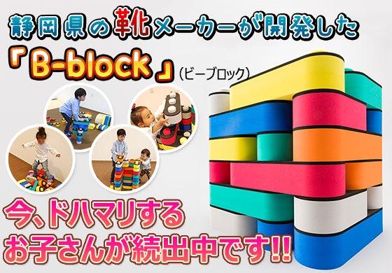 洗えるブロック『B-block』概要イメージ