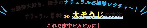 お掃除大好き、綾子のナチュラルお掃除レクチャー ナチュラル素材de大そうじの方法 これで家中ピカピカに!