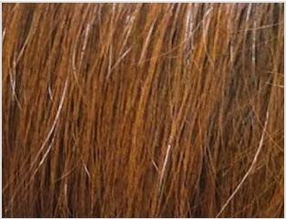 画像:ナチュラルブラウンで染めた髪