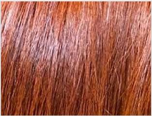 画像:キャラメルブラウンで染めた髪
