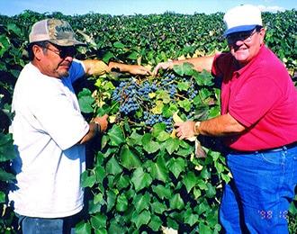 イメージ画像:栽培者との交流