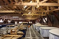 もろみの三段仕込み用の樽が並ぶ