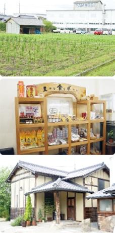 画像:自社栽培と古民家カフェ