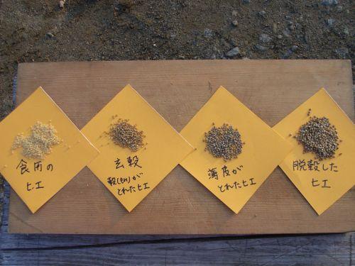 精穀された雑穀