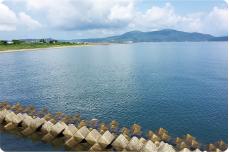 画像:海苔養殖をする浜辺