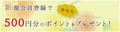 新規会員登録で今なら500円分のポイントをプレゼント!