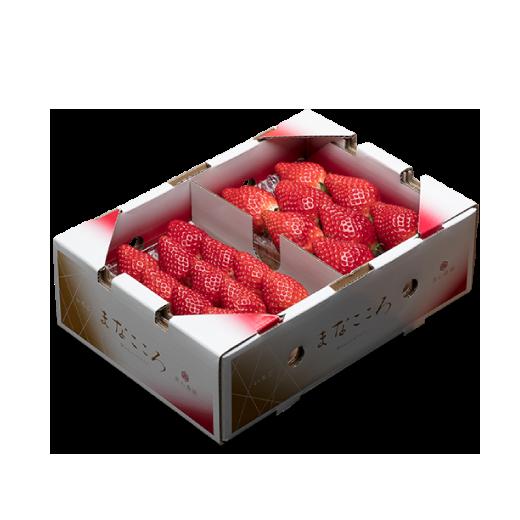まなこころ・葵 1箱