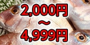 2000円〜4999円