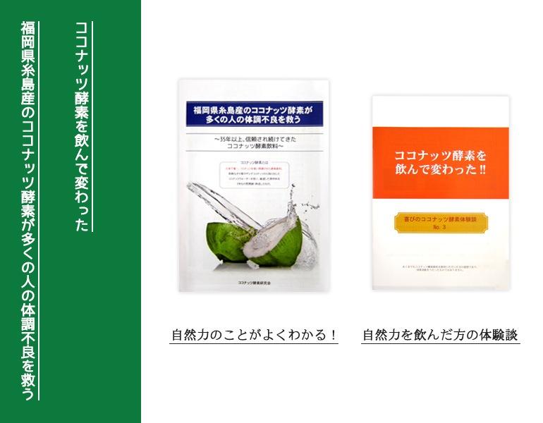 自然縁 ココナッツ酵素とは?体験談
