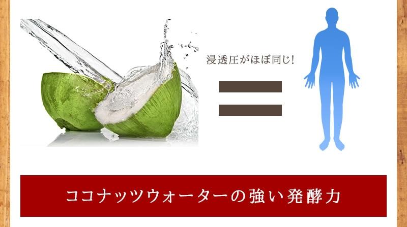 ココナッツウォーターの強い発酵力