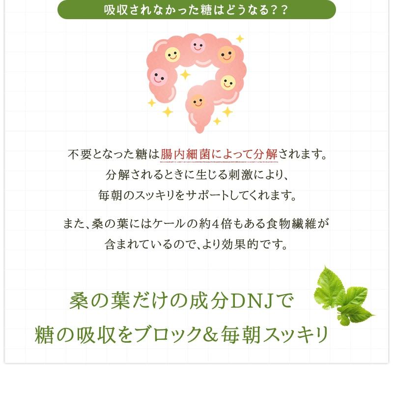 桑の葉特有のDNJの働きで吸収されなかった糖は、腸内細菌によって分解され、その刺激によって毎朝のスッキリをサポートします。桑の葉にはケールの約4倍の食物繊維が含まれているのでより効果的です。
